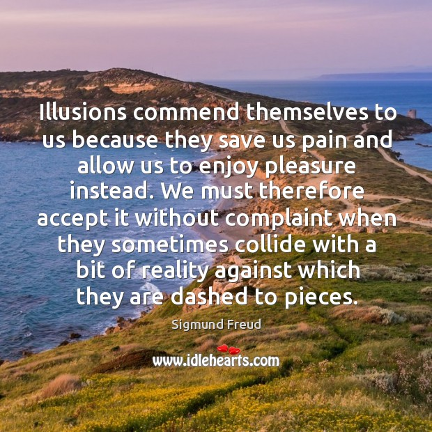 Image, Illusions commend themselves to us because they save us pain and allow us to enjoy pleasure instead.
