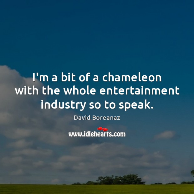 Image, I'm a bit of a chameleon with the whole entertainment industry so to speak.