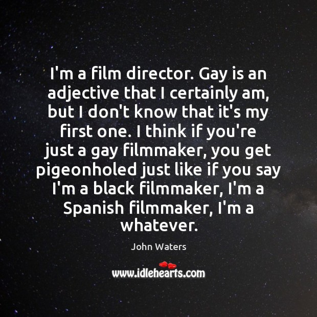 Image, I'm a film director. Gay is an adjective that I certainly am,