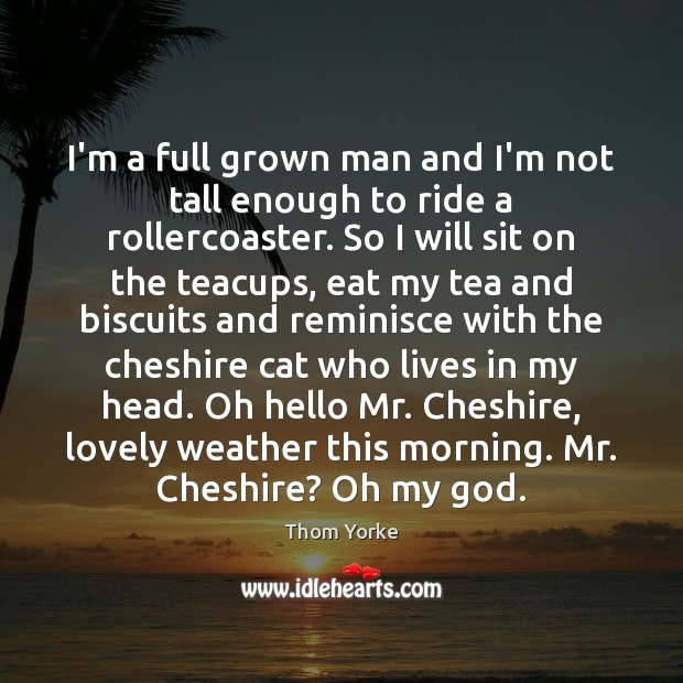 I'm a full grown man and I'm not tall enough to ride Image