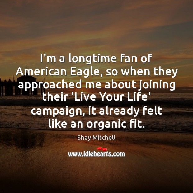 I'm a longtime fan of American Eagle, so when they approached me Image