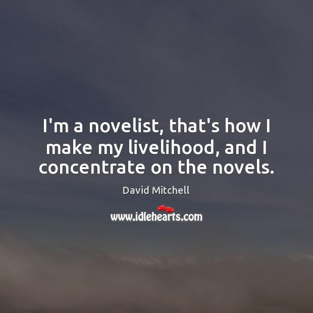 Image, I'm a novelist, that's how I make my livelihood, and I concentrate on the novels.