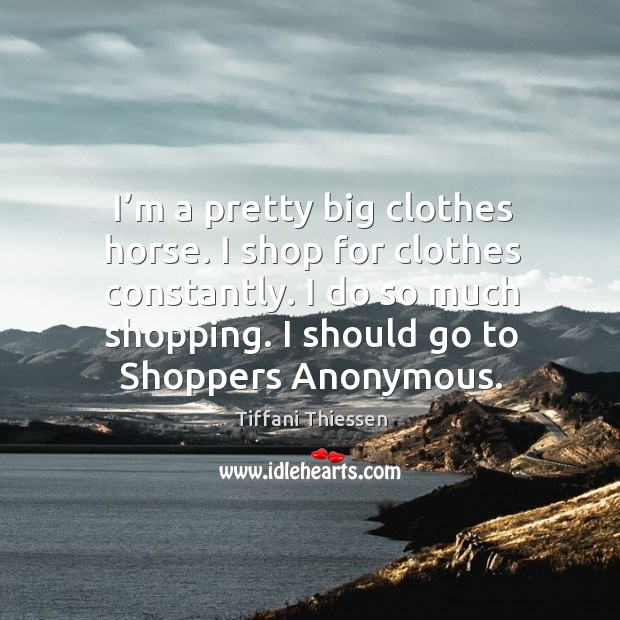 I'm a pretty big clothes horse. I shop for clothes constantly. I do so much shopping. Image