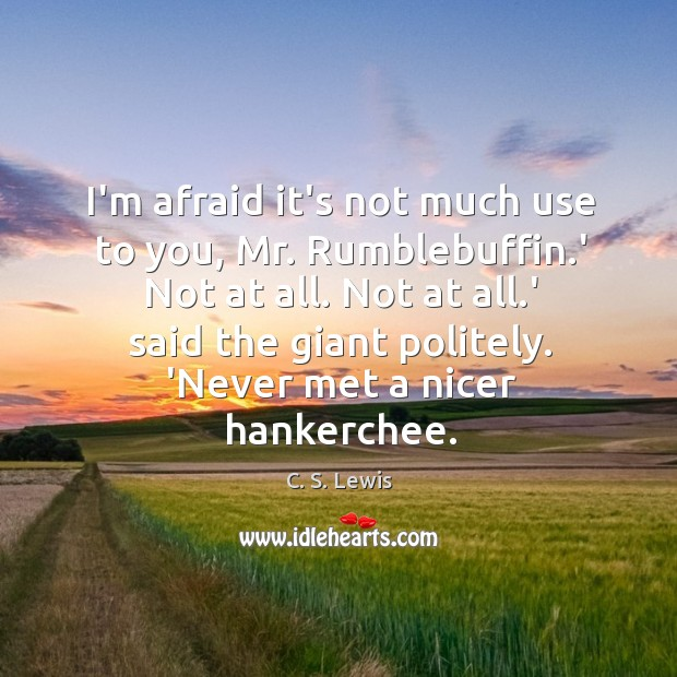 I'm afraid it's not much use to you, Mr. Rumblebuffin.' Not Image