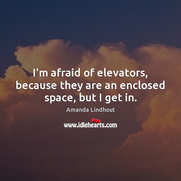 I'm afraid of elevators, because they are an enclosed space, but I get in. Amanda Lindhout Picture Quote