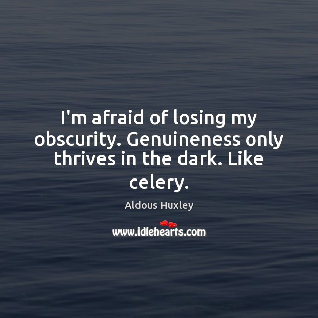 Image, I'm afraid of losing my obscurity. Genuineness only thrives in the dark. Like celery.