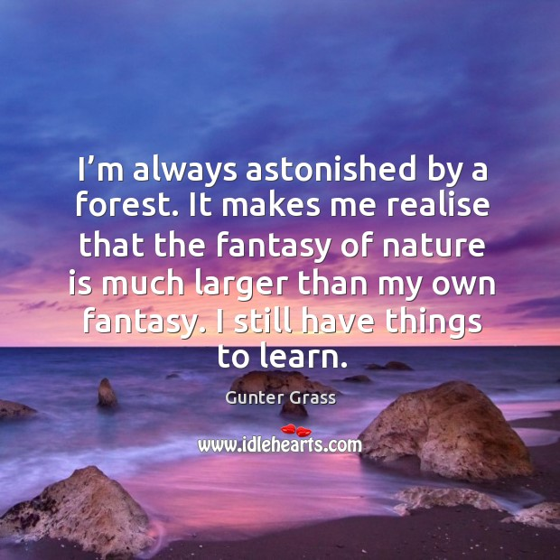 I'm always astonished by a forest. It makes me realise that the fantasy of nature is Gunter Grass Picture Quote