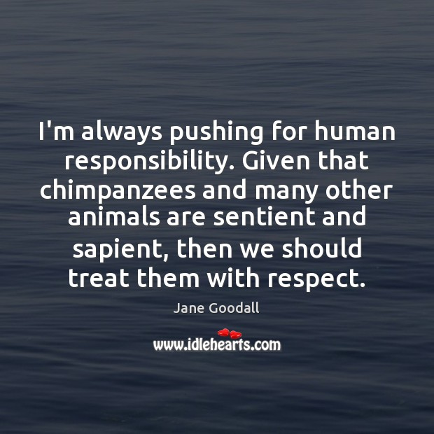 I'm always pushing for human responsibility. Given that chimpanzees and many other Jane Goodall Picture Quote