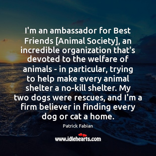 Image, I'm an ambassador for Best Friends [Animal Society], an incredible organization that's