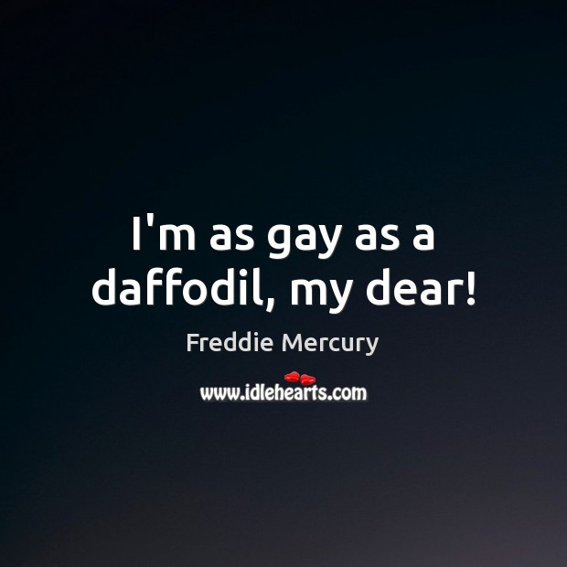 I'm as gay as a daffodil, my dear! Freddie Mercury Picture Quote