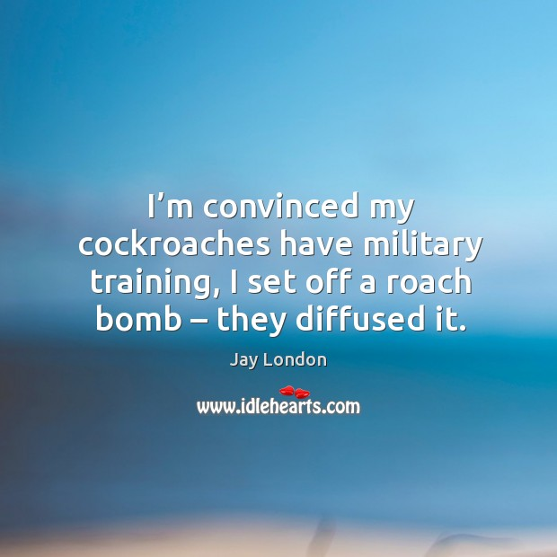 I'm convinced my cockroaches have military training, I set off a roach bomb – they diffused it. Jay London Picture Quote
