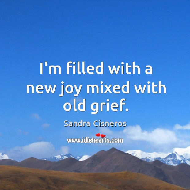 I'm filled with a new joy mixed with old grief. Image
