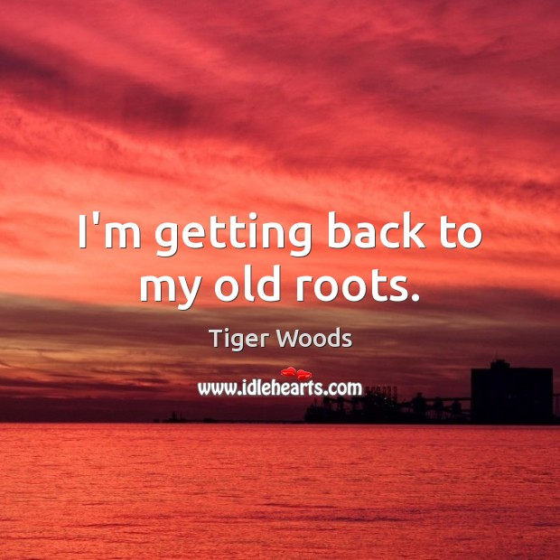 I'm getting back to my old roots. Tiger Woods Picture Quote