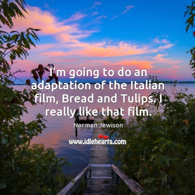 Image, I'm going to do an adaptation of the italian film, bread and tulips. I really like that film.