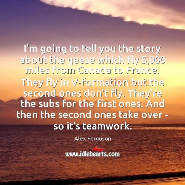 I'm going to tell you the story about the geese which fly 5,000 Teamwork Quotes Image