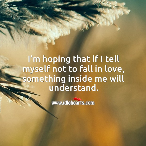 I'm hoping that if I tell myself not to fall in love, something inside me will understand. Image