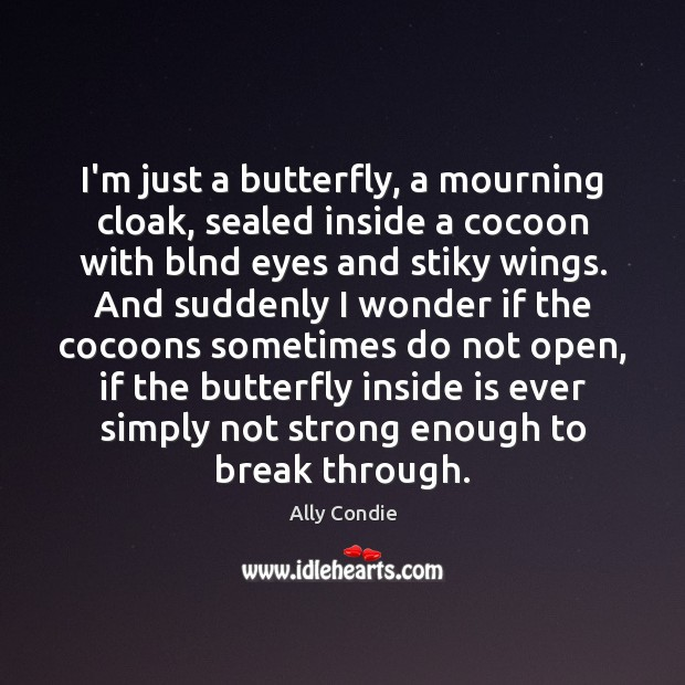 Image, I'm just a butterfly, a mourning cloak, sealed inside a cocoon with