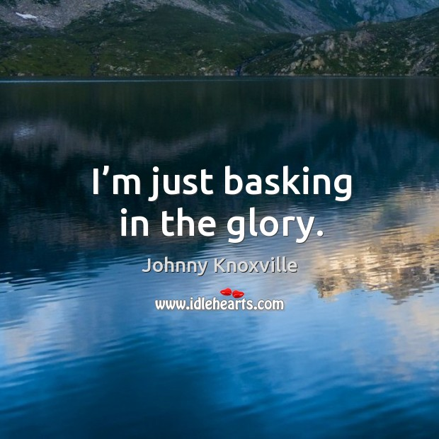 I'm just basking in the glory. Johnny Knoxville Picture Quote