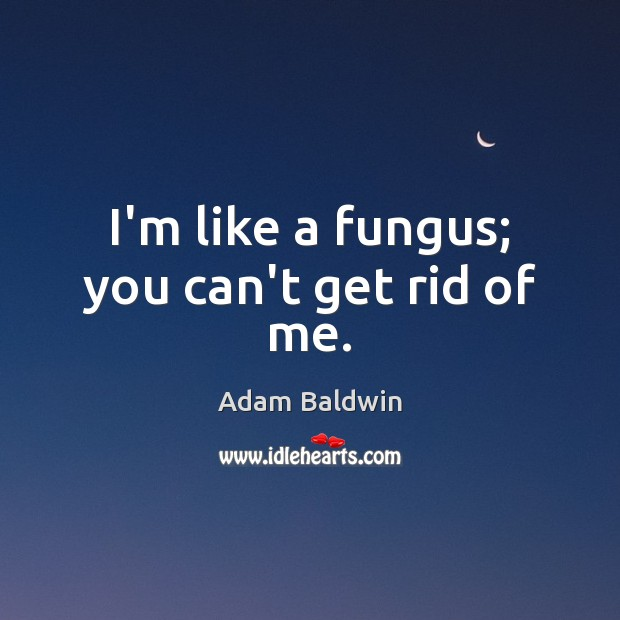 Image, I'm like a fungus; you can't get rid of me.