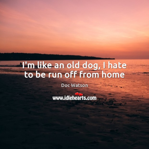 I'm like an old dog, I hate to be run off from home Doc Watson Picture Quote