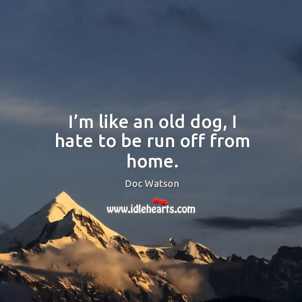 I'm like an old dog, I hate to be run off from home. Doc Watson Picture Quote