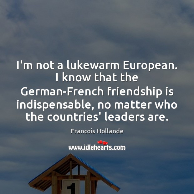 Image, I'm not a lukewarm European. I know that the German-French friendship is