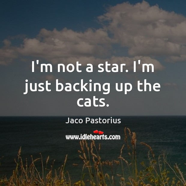 I'm not a star. I'm just backing up the cats. Image