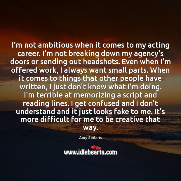 I'm not ambitious when it comes to my acting career. I'm not Amy Sedaris Picture Quote