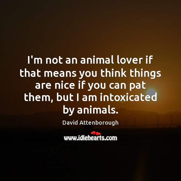Image, I'm not an animal lover if that means you think things are