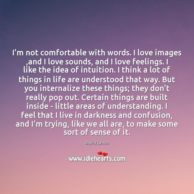 Image, I'm not comfortable with words. I love images ,and I love sounds,