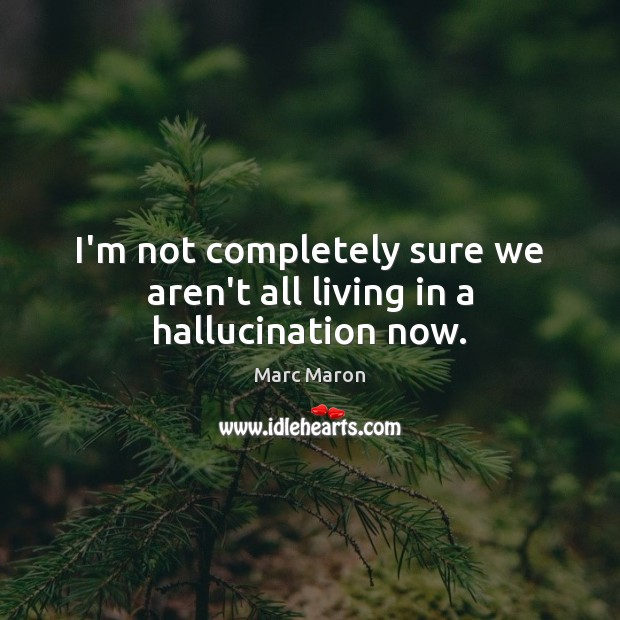 I'm not completely sure we aren't all living in a hallucination now. Marc Maron Picture Quote