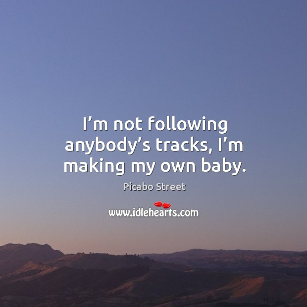 Image, I'm not following anybody's tracks, I'm making my own baby.