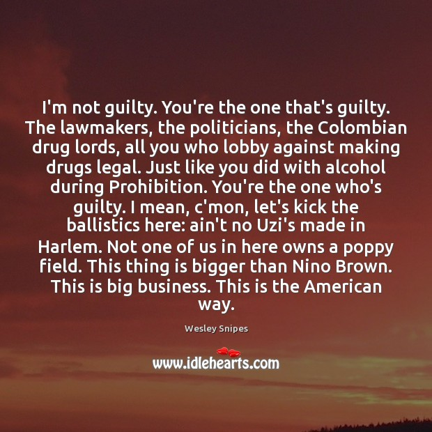 Image, I'm not guilty. You're the one that's guilty. The lawmakers, the politicians,