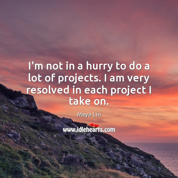 I'm not in a hurry to do a lot of projects. I am very resolved in each project I take on. Image