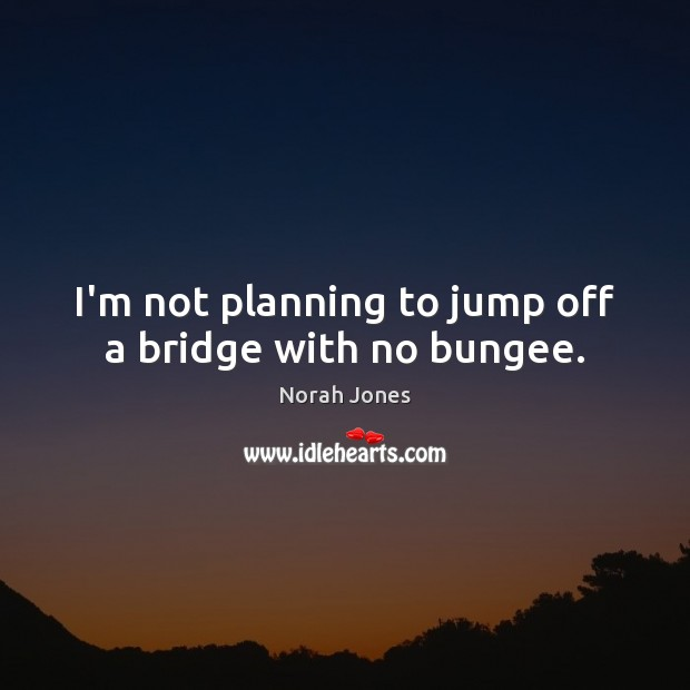 I'm not planning to jump off a bridge with no bungee. Norah Jones Picture Quote