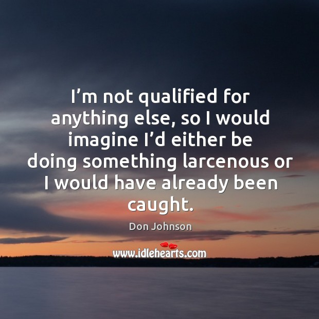 I'm not qualified for anything else, so I would imagine I'd either be doing something Don Johnson Picture Quote