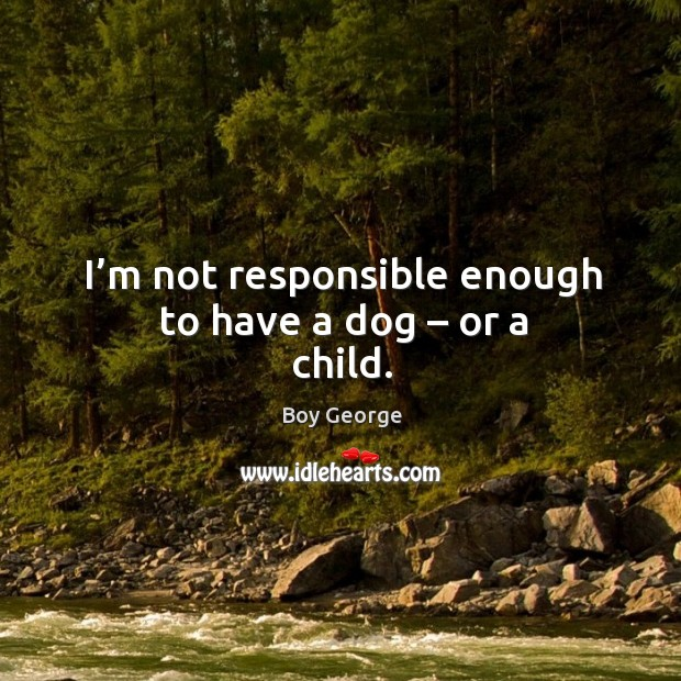 Image, I'm not responsible enough to have a dog – or a child.