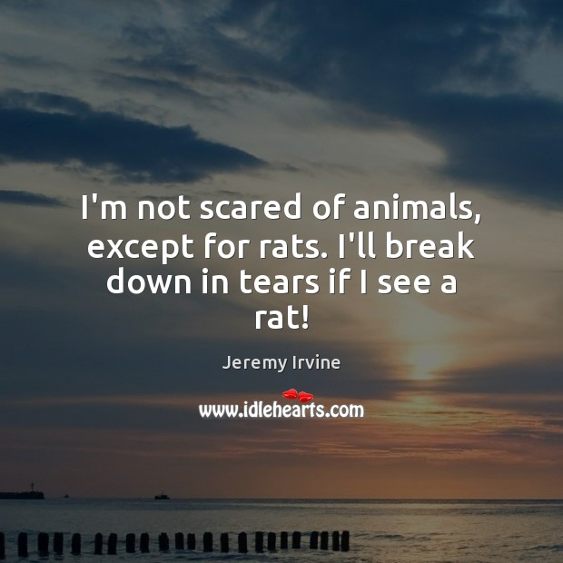 Image, I'm not scared of animals, except for rats. I'll break down in tears if I see a rat!