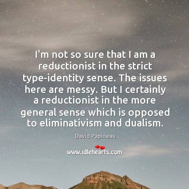 I'm not so sure that I am a reductionist in the strict Image
