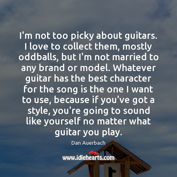 Image, I'm not too picky about guitars. I love to collect them, mostly