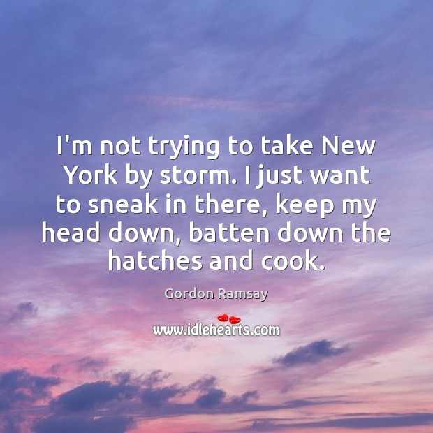 I'm not trying to take New York by storm. I just want Gordon Ramsay Picture Quote