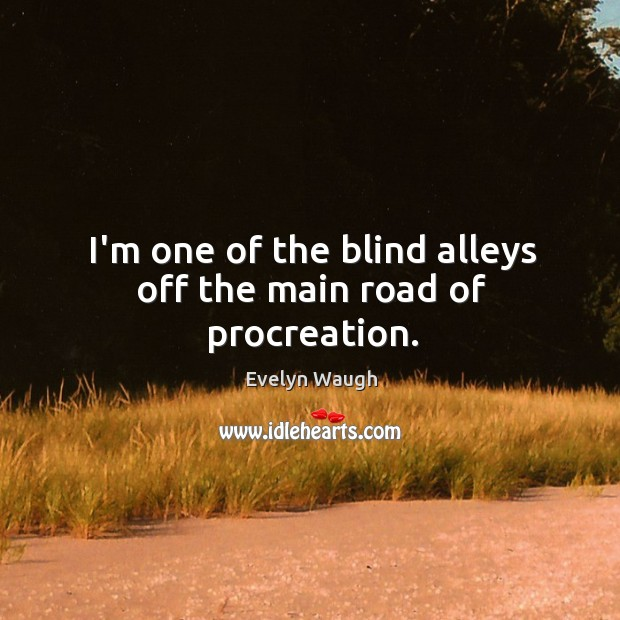 I'm one of the blind alleys off the main road of procreation. Image