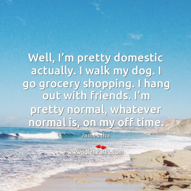 I'm pretty normal, whatever normal is, on my off time. James Iha Picture Quote