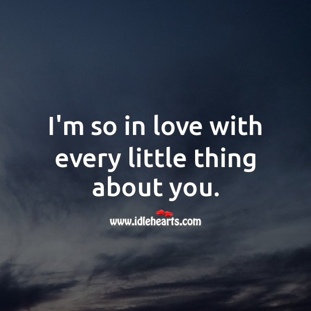 I'm so in love with every little thing about you. Being In Love Quotes Image