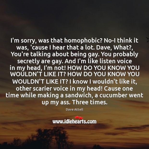 I'm sorry, was that homophobic? No-I think it was, 'cause I hear Image