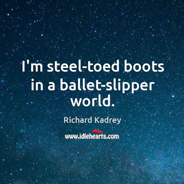 I'm steel-toed boots in a ballet-slipper world. Image