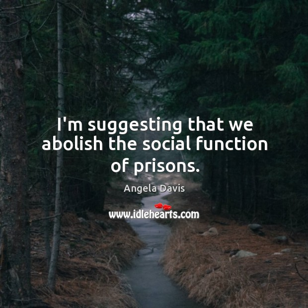 I'm suggesting that we abolish the social function of prisons. Image