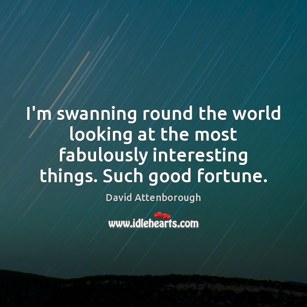 Image, I'm swanning round the world looking at the most fabulously interesting things.