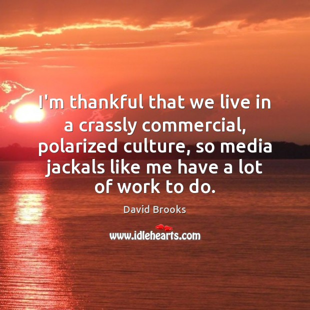 I'm thankful that we live in a crassly commercial, polarized culture, so Thankful Quotes Image