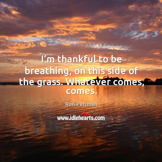Image, I'm thankful to be breathing, on this side of the grass. Whatever comes, comes.